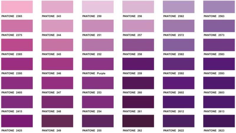 Pantone Purple Color Chart